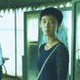 映画レビュー「鵞鳥湖の夜」